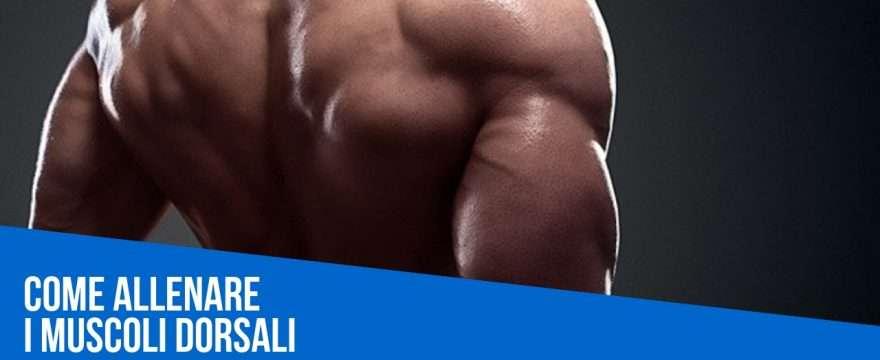 esercizi dorsali